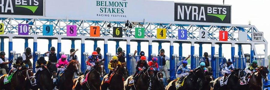 2019 Belmont Stakes Dark Horses and Longshots
