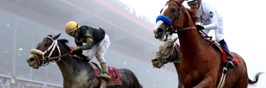 2019 Preakness Stakes Betting Strategies