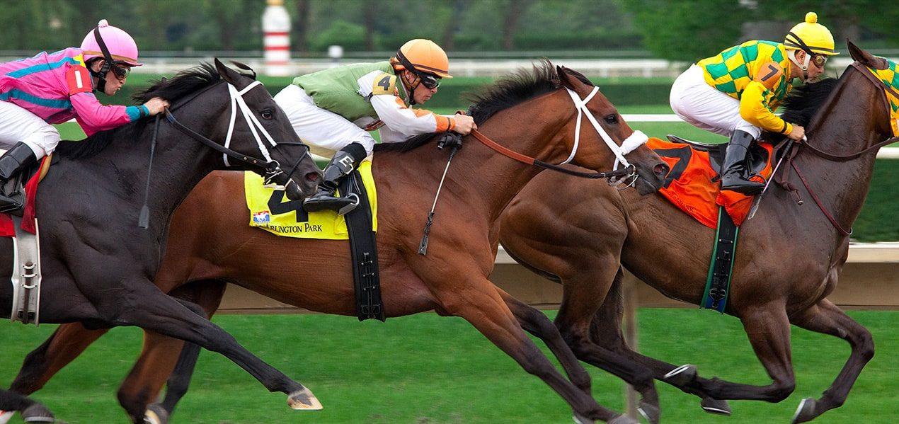 MyBookie.ag Online Racebook