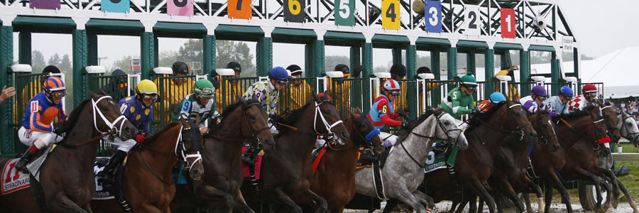 Favorites, Dark Horses & Smart Picks for 2018 Preakness Stakes.