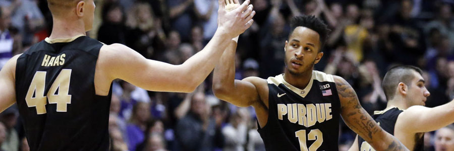 CS Fullerton vs. Purdue Game Info, NCAAB Lines & Pick