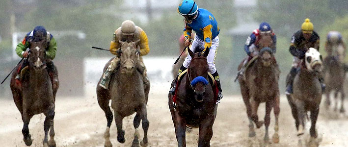 Win, Place, Show Picks Betting at 2015 Belmont Stakes