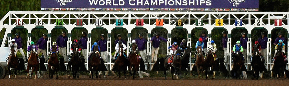Horse Racing Betting On Breeder's Cup Not Limited To Saturday!