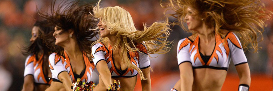 Ravens Are Favorites in NFL Lines vs. Bengals in Week 17