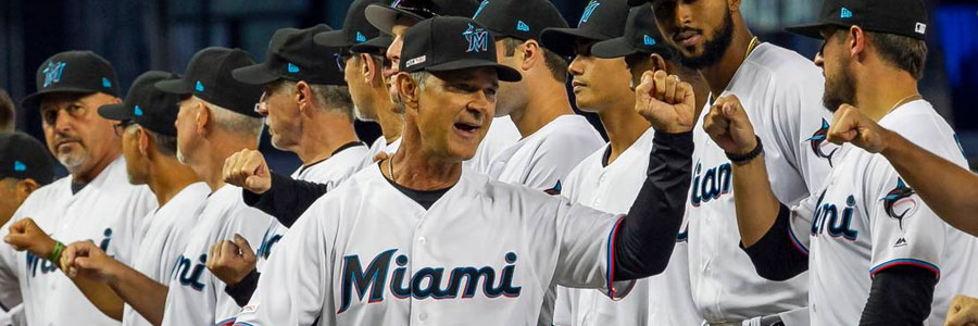 Are the Marlins a secure bet vs the Rays in the MLB odds?
