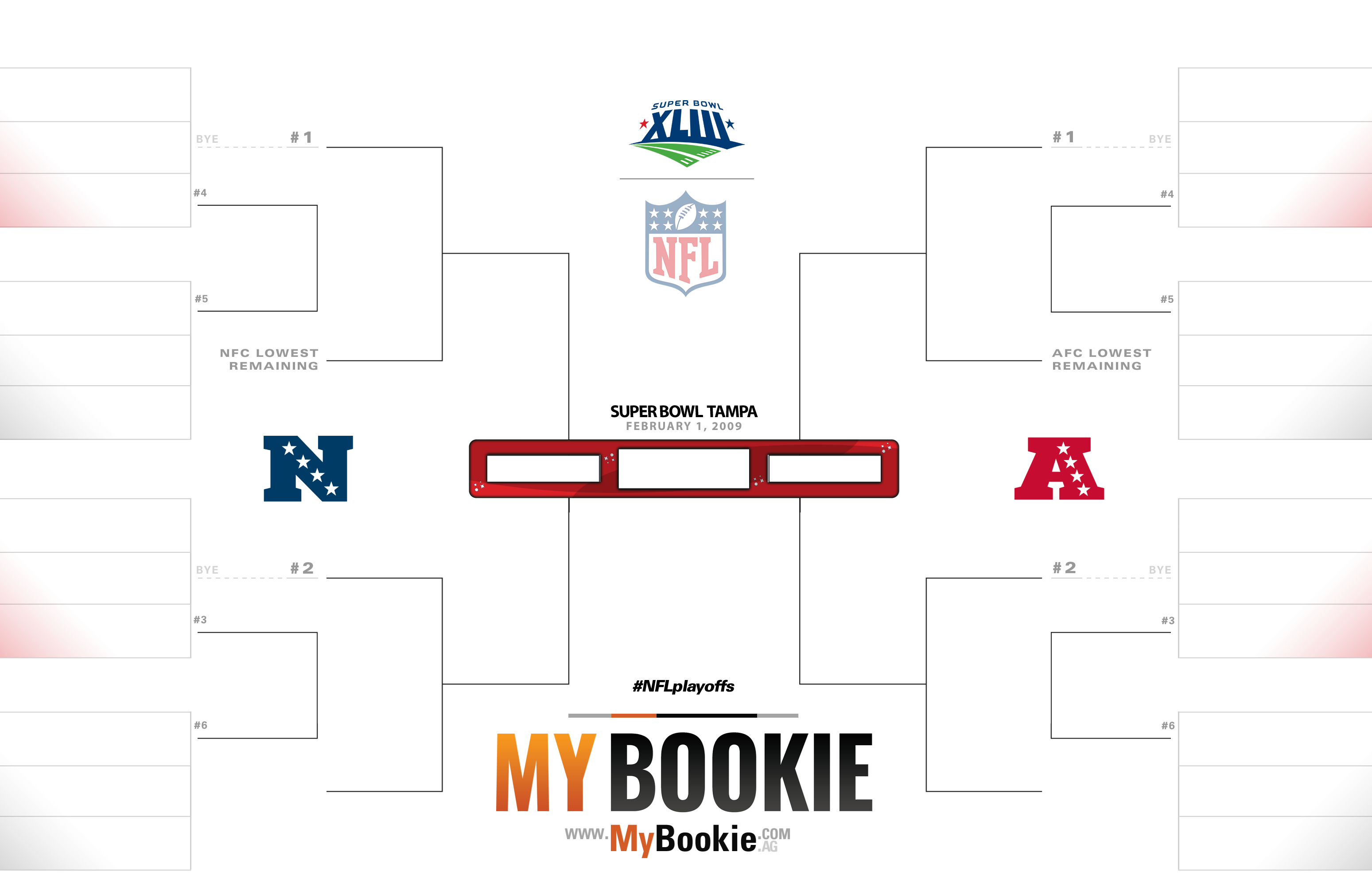 NFL Playoffs / Superbowl 2009 Printable Bracket