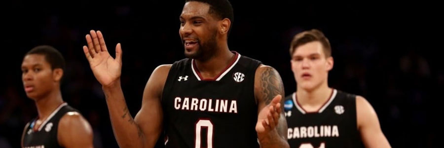 Are the Gamecocks a safe bet vs Tennessee in the NCAAB lines?