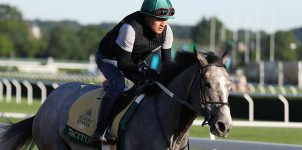2019 Belmont Stakes Betting Favorites